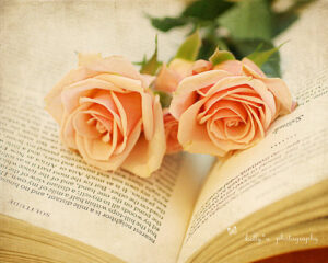 roses and a book